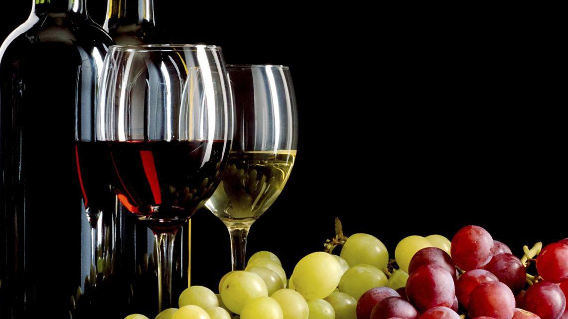 Vin primeur : un vin qui n'a pas mûri