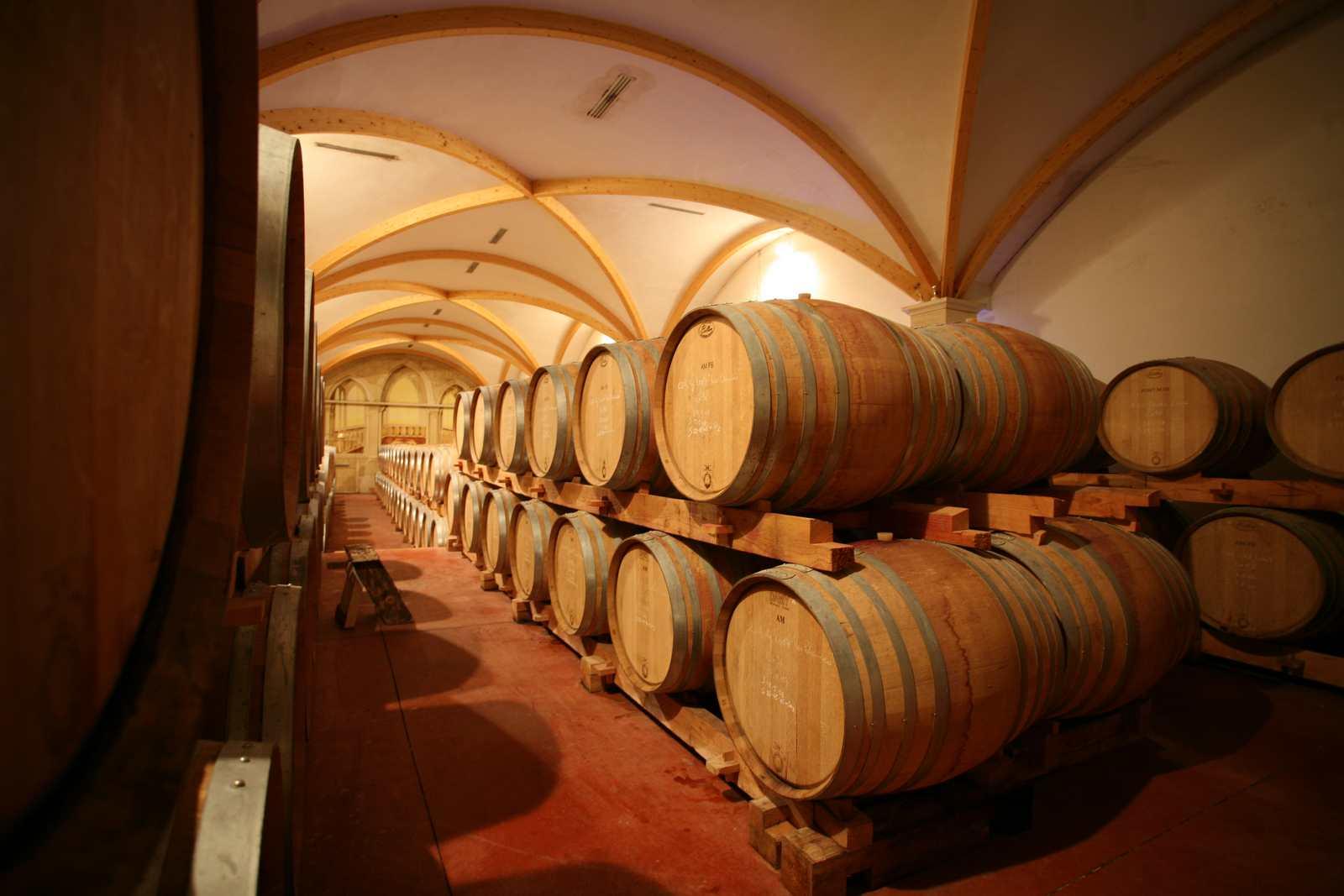 Appellation vin : Ce que vous avez toujours eu envie de savoir sur les vins et leurs fameuses appellations